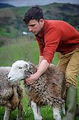 Cumbrian Life