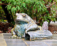 Bronze frog statue at Bellevue Botanical Gardens - crop