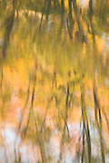 Autumn reflection, Lake County, Ohio