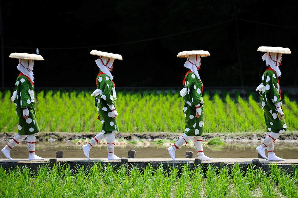 JUNE 26, 2016 - during Oodaka-saiden Otaue-sai, a rice planting festival at Hikamianeko Shrine in Nagoya, Japan. (Photo by Ben Weller/AFLO) (JAPAN) [UHU]