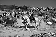A horseman leads the procession of St. Bartolomeu while people assist on the dunes of the beach in São Bartolomeu do Mar. The procession to thank the Saint incorporates hundreds of extras and large litters, which reconstruct biblical episodes. This tradition that dates back to the sixteenth century (1566), and it claims the devil is on the loose during this day. Every year on 24 August  faith and tradition join thousands of people at the feast of St. Bartolomeu do Mar, for ritual that mixes the sacred and the profane.
