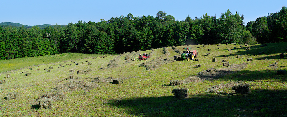 Haying in the summer, Williamstown , Vermont