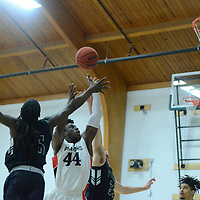 Men's Basketball: William Peace University Pacers vs. LaGrange College Panthers