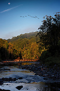 Moon, Geese and Patapsco River Dawn near Oella, Maryland.