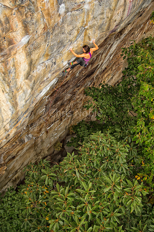 "Elaina Arenz  climbing ""Finders Keepers"" 12c, at The Cirque, The New River Gorge"