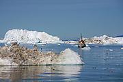 Ilulissat (Jakobshavn), Pakitsup Nuna, GRL, 20070625:   The glaciers of Greenland are melting. Pro's and cons.<br /> Photo: Orjan F. Ellingvag/ Dagens Naringsliv/ Corbis