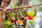 THIMMAMMA MARRIMANU, INDIA - 25th October 2019 - Prayer offerings tied to Thimmamma Marrimanu banyan tree - the world's largest single tree canopy. Andhra Pradesh, India. <br /><br />There is a very strong belief that if a person or couple ties a saffron ribbon, bangles or a small pouch containing natural offerings like leaves and spices to the tree, the goddess will bless them with fertility within one year of placing the offering.
