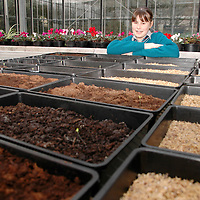 20/12/2005<br />Kilrush Community School student Kate O'Reilly working on her Young Scientist of The Year Project, 'Suitability of Different Fertilisers and Suitable for Plant and Vegetables Growth'.<br />Picture. Cathal Noonan/Press22.