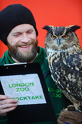 © Licensed to London News Pictures. 02/01/2014 London, UK. Max the Eagle Owl is held by keepe rJamie Pearce during the annual stocktake at London Zoo, Regents Park. <br /> Home to more than 800 unique species, zookeepers take stock of every invertebrate, bird, fish, mammal, reptile, and amphibian counting every animal in the annual stocktake.<br /> The compulsory count is required as part of London Zoo's license, the results are logged and the data is shared with zoos around the world to manage international breeding programmes. Photo credit : Simon Jacobs/LNP
