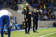 Wolverhampton Wanderers head coach Walter Zenga during the EFL Sky Bet Championship match between Brighton and Hove Albion and Wolverhampton Wanderers at the American Express Community Stadium, Brighton and Hove, England on 18 October 2016.
