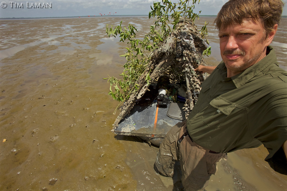 Self portrait of photographer Tim Laman with inner-tube blind on mangrove mudflats.