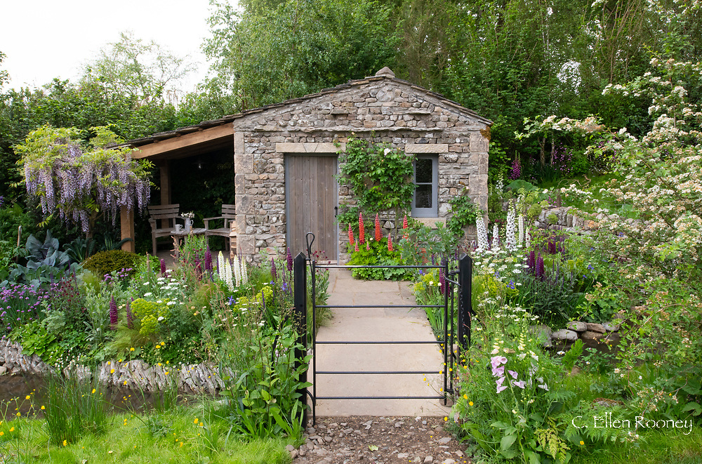 Lupinus and Delphinium in a traditional cottage garden surrounding a stone bothy in the Welcome to Yorkshire Garden at the RHS Chelsea Flower Show 2018, London, UK