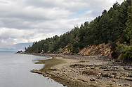 A view of the rocky shoreline looking northwest from the BC Ferries terminal at Vesuvius Bay on Salt Spring Island, British Columbia, Canada.