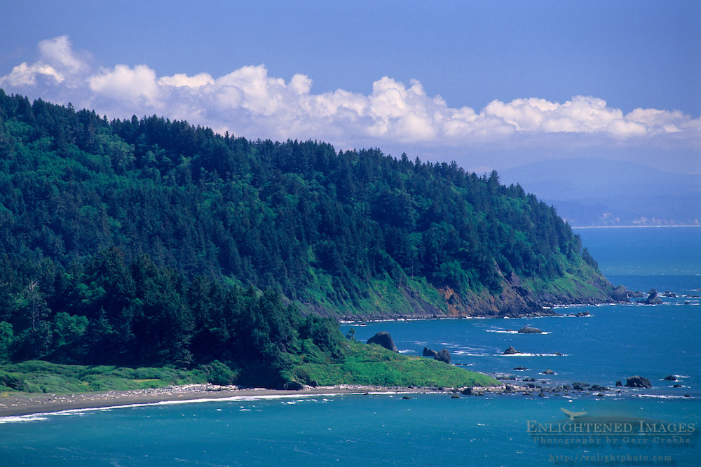 Rugged North Coast forest and hills at False Klamath Cove, Del Norte County, California