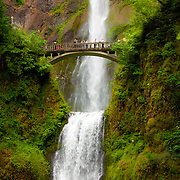 Multnomah Falls - OR