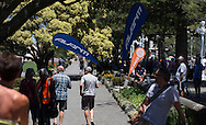 Women's elite road race, Big Save Elite Road National Championships,  Napier, Hawkes Bay, New Zealand, 09 January 2016. Photo by John Cowpland / alphapix