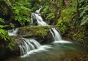 Waterfalls on Onomea Stream in Hawaii Tropical Botanical Garden near Hilo on the Big Island of Hawaii.