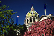 PA Capitol, Dome and Spring Flowering Trees, Harrisburg, PA