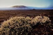 France-Reunion island