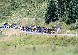 12.07.2019, Kitzbühel, AUT, Ö-Tour, Österreich Radrundfahrt, 6. Etappe, von Kitzbühel nach Kitzbüheler Horn (116,7 km), im Bild Das Peleton auf der Huber Höhe bei St. Johan in Tirol // the peleton climbs the Huber Höhe near St. Johann in Tyrol during 6th stage from Kitzbühel to Kitzbüheler Horn (116,7 km) of the 2019 Tour of Austria. Kitzbühel, Austria on 2019/07/12. EXPA Pictures © 2019, PhotoCredit: EXPA/ Reinhard Eisenbauer