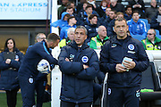 Brighton Manager, Chris Hughton anbd Brighton Assistant Manager, Colin Calderwood during the Sky Bet Championship match between Brighton and Hove Albion and Queens Park Rangers at the American Express Community Stadium, Brighton and Hove, England on 19 April 2016.