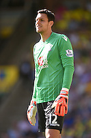 Crystal Palace goalkeeper Alex McCarthy