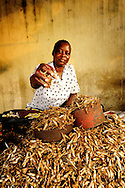 A woman selling sardines at the street market near the ferry in Likoni, Kenya.