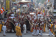 Sri Lanka. The annual pageant, the Kandy Perahera, culminates with a procession during the day. Elephants, dancers, drummers and flag bearers leave from and return to the Dalada Maligawa or Temple of the Tooth. The city of Kandy is in the hill country, 72 miles or 130 km from Colombo.