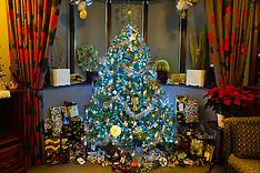 2018-12-02-Christmas_Trees