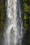 'Akaka Falls, South Hilo District, The Big Island of Hawai'i, Hawaii