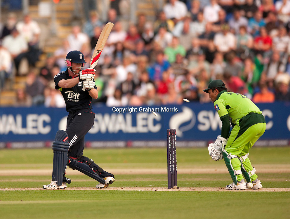 Paul Collingwood is bowled by Shahid Afridi during the first T20 international between England and Pakistan in Cardiff.  Photo: Graham Morris (Tel: +44(0)20 8969 4192 Email: sales@cricketpix.com) 05/09/10
