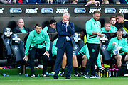 Queens Park Rangers manager Steve McClaren looking worried during the EFL Sky Bet Championship match between Swansea City and Queens Park Rangers at the Liberty Stadium, Swansea, Wales on 29 September 2018.