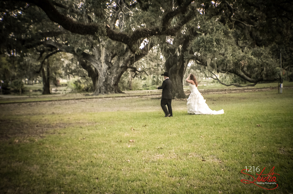 Kyle & Tia, New Orleans Wedding in City Park, 2012. New Orleans Wedding Photographer, 1216 Studio. Outdoor Wedding Photo Album.