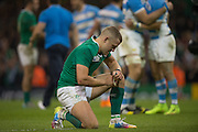 Cardiff, Great Britain,Disspointed, Ian MADIGAN after the loss of  Quarter Final   Ireland vs Argentina.  by 43 points to 20.  2015 Rugby World Cup,  Venue, Millennium Stadium, Cardiff. Wales   Sunday  18/10/2015.   [Mandatory Credit; Peter Spurrier/Intersport-images]