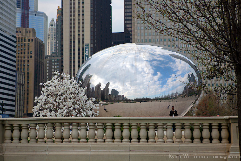 USA, Illinois, Chicago. Millenium Park.