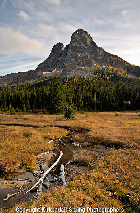 WA13454-00...WASHINGTON - Late afternoon view of Liberty Bell Mountain from Washington Pass in the North Cascades.