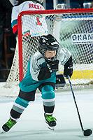 KELOWNA, BC - JANUARY 31: A minor hockey player enters the ice for intermission between the Spokane Chiefs and the Kelowna Rockets at Prospera Place on January 31, 2020 in Kelowna, Canada. (Photo by Marissa Baecker/Shoot the Breeze)