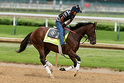 Derby 142 hopeful Brody's Cause with Miguel Garcia up were on the track for training, Tuesday, May 03, 2016 at Churchill Downs in Louisville.
