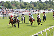 MANJAAM (8) ridden by jockey Edward Greatrex and trained by Ed Dunlop winning The Brittains Beverages Extraordinary Spirits Handicap Stakes over 1m 4f (£15,000) at York Racecourse, York, United Kingdom on 26 May 2018. Picture by Mick Atkins.