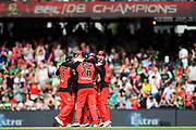 17th February 2019, Marvel Stadium, Melbourne, Australia; Australian Big Bash Cricket League Final, Melbourne Renegades versus Melbourne Stars; Renegades players celebrate their final win