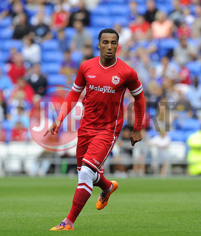 Cardiff City's Nicky Maynard  - Photo mandatory by-line: Joe Meredith/JMP - Mobile: 07966 386802 02/08/2014 - SPORT - FOOTBALL - Cardiff - Cardiff City Stadium - Cardiff City v VfL Wolfsburg - Pre-Season Friendly