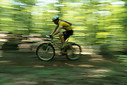 mountain biker riding through the woods