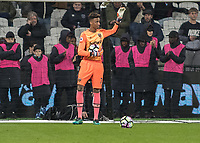 Football - 2016 / 2017 Premier League - West Ham United vs. Manchester United<br /> <br /> West Ham's Nathan Trott is presented to the crowd at The London Stadium.<br /> <br /> COLORSPORT/DANIEL BEARHAM