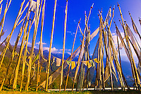 Prayer flags, Dochula Pass (Himalayas in background)