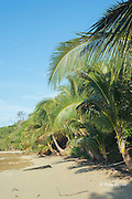 beach at Ika Lahi Lodge, Hunga Island, Vava'u, Kingdom of Tonga, South Pacific