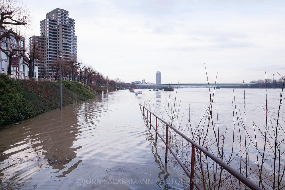 Cologne, Germany, 8. January 2018, flood of the river Rhine, in the background the Zoo bridge.<br /> <br /> K&ouml;ln, Deutschland, 8. Januar 2018, Hochwasser des Rheins, im Hintergrund die Zoobruecke.