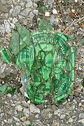close up of a broken beer bottle on asphalt