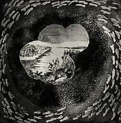 Grafik av Ester Sörberg Lindgren