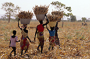 Agriculture Africa 03