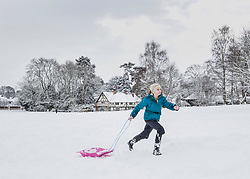 © Licensed to London News Pictures. 27/02/2018. Bearsted, UK. A girl pulls her sledge across the green in Bearsted, Kent after school was closed due to heavy snow. Freezing temperatures and heavy snow are affecting large parts of Kent.  Photo credit: Peter Macdiarmid/LNP
